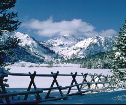 skiing-trails-near-Squaw Valley Resort