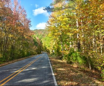 hiking-trails-near-Arkansas Highway 7 Scenic Byway