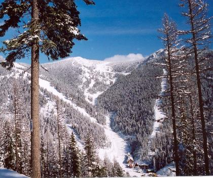 skiing-trails-near-Montana Snowbowl