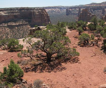 hiking-trails-near-Rim Rock Drive Colorado National Monument