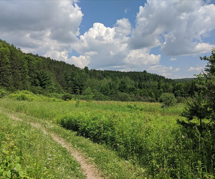 skiing-trails-near-Talisman Mountain Resort