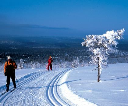 skiing-trails-near-Mont Gleason