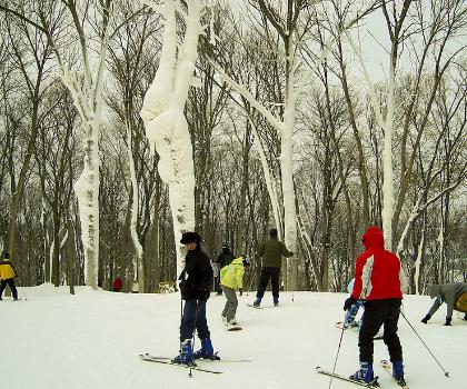 skiing-trails-near-Perfect North Slopes
