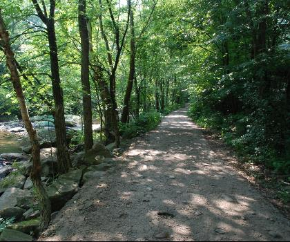 hiking-trails-near-Kennison Mountain, West Virginia