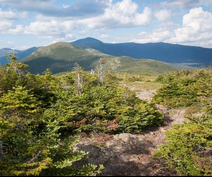 hiking-trails-near-Mount Pierce, New Hampshire