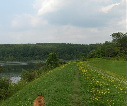 hiking-trails-USA-Tassel Hill, New York