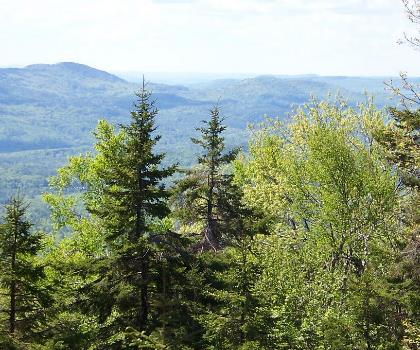 hiking-trails-near-Kearsarge North, New Hampshire