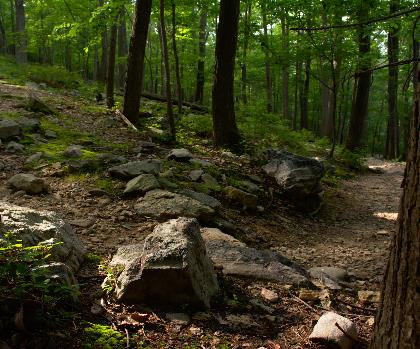 hiking-trails-near-Catoctin Mountain, Maryland