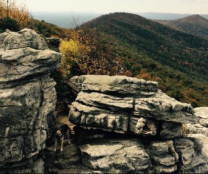 hiking-trails-near-The Peak, Virginia
