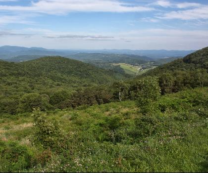 hiking-trails-near-Hazeltop-South Ridge, Virginia