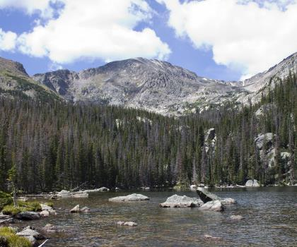 hiking-trails-near-Ypsilon Mountain, Colorado
