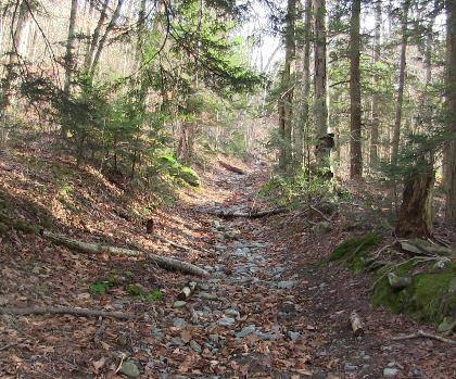 hiking-trails-near-Alander Mountain, Massachusetts
